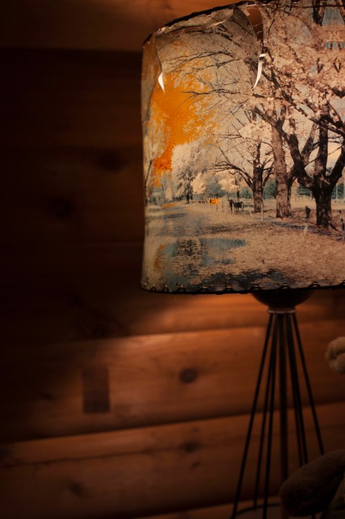 lidell_cabinlamp